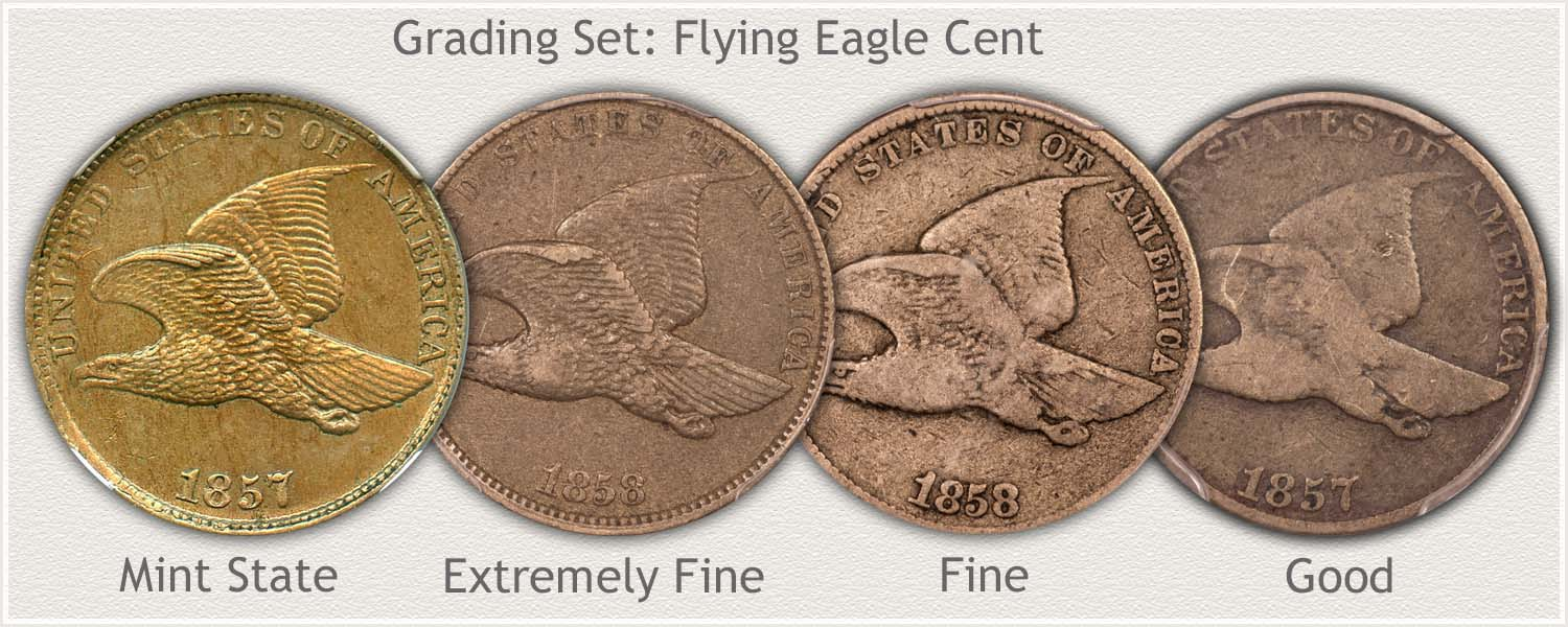 Grade Set Flying Eagle Cents