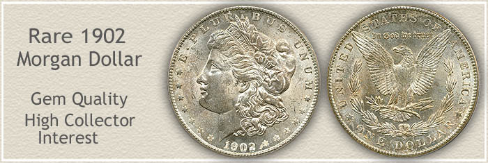 Rare Gem Quality 1902-S Morgan Silver Dollar