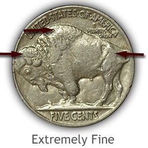 Grading Reverse Extremely Fine Buffalo Nickels