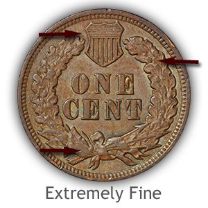 Grading Reverse Extremely Fine Indian Head Pennies