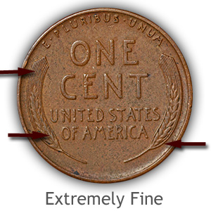 Grading Reverse Extremely Fine Lincoln Wheat Penny