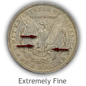 Grading Reverse Extremely Fine Morgan Silver Dollars