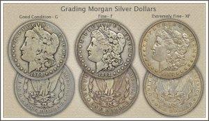 Visit...  Video | Grading Morgan Silver Dollars
