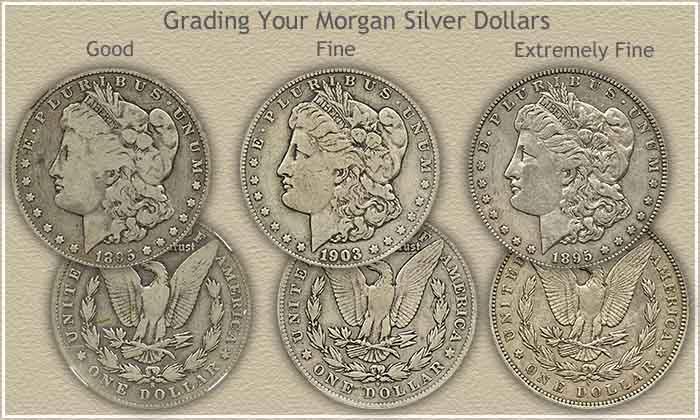 Rising morgan silver dollar values