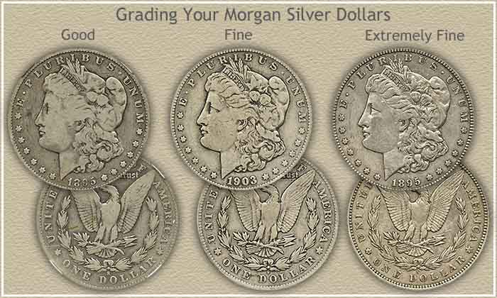 Rising Morgan Silver Dollar Values