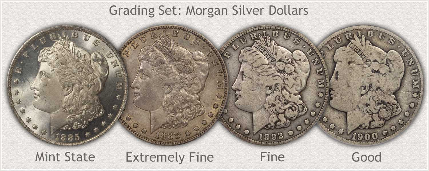 Grading Set Morgan Silver Dollars Mint State, Extremely Fine, Fine, and Good Condition
