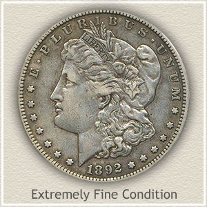 Morgan Silver Dollar Extremely Fine Condition