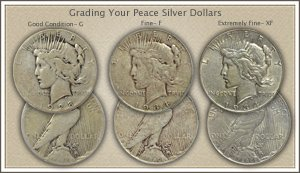 Visit...  Video | Grading Peace Silver Dollars