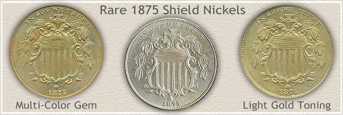 Rare 1875 Nickel Value