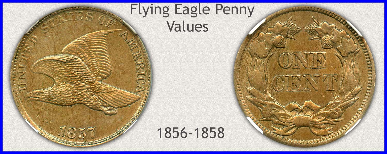 Picture of Flying Eagle Penny Minted 1856 to 1858