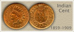 Visit...  Indian Head Pennies Value