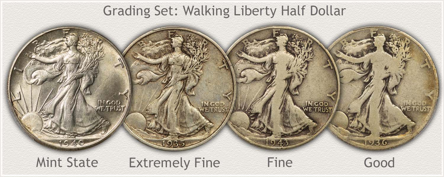 Grading Set of Walking Liberty Half Dollars in Mint State, Extremely Fine, Fine, and Good Grades